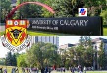 Postdoctoral Scholar Position in University of Calgary, Canada