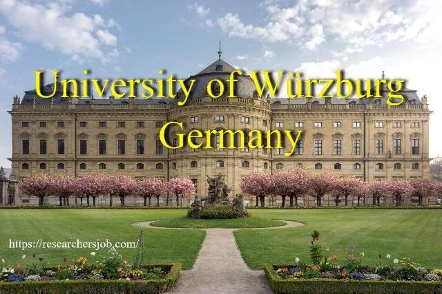 PostdocPhD Student (fmd) Position at University of Würzburg, Germany