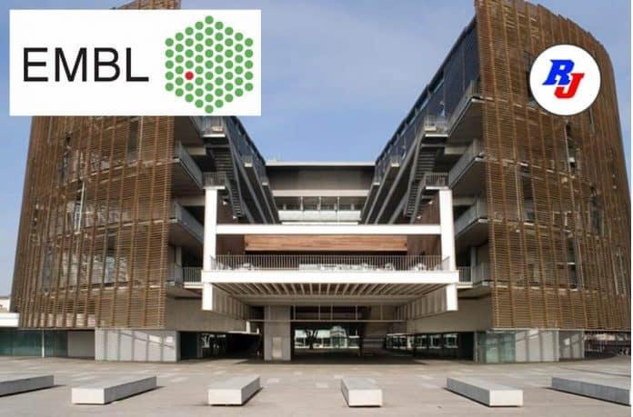 Postdoctoral Fellowship Position at EMBL, Hinxton, UK